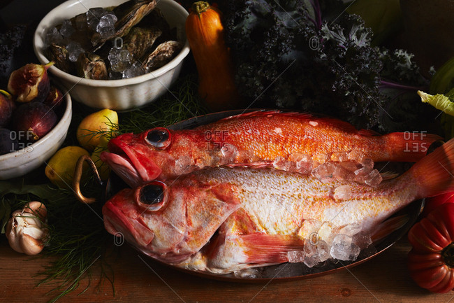 Whole fish and oysters on ice with a variety of autumn produce
