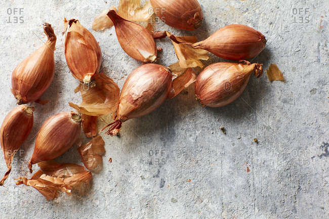 Shallots on gray background
