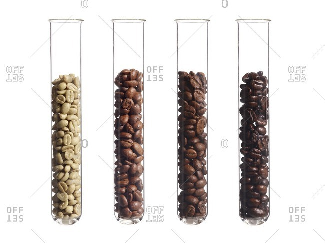 Raw, light, medium and dark roast coffee beans in test tubes