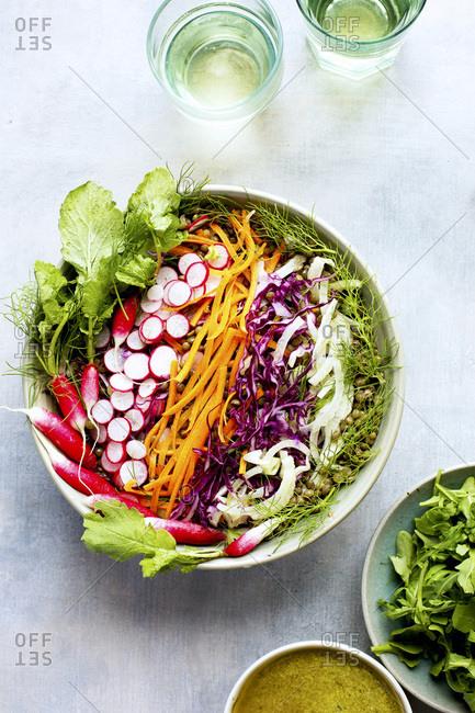 Tarragon Pesto French Green Lentil Salad