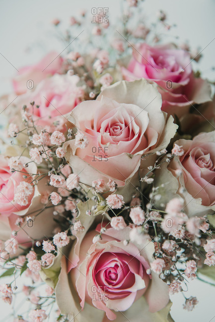 Close-up from above view of bunch of beautiful light pink roses