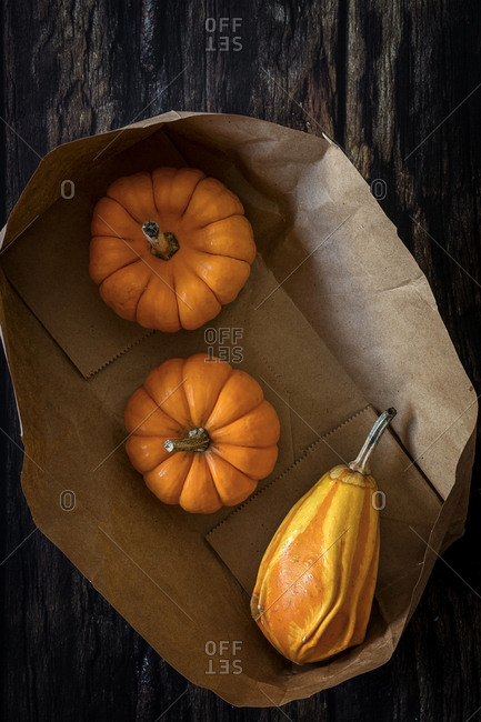 Halloween decoration background on dark background. Pumpkins. Flat lay. Copy space
