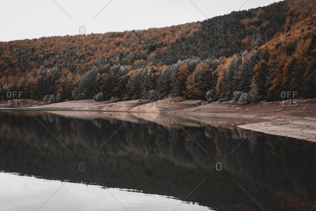 Majestic view of autumn forest and hill located near calm water of lake on dull day in Navarre, Spain