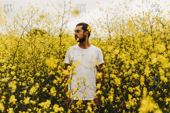 Handsome man in white T-shirt looking away while standing among beautiful yellow flowers