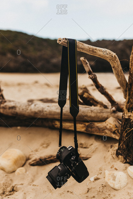 Professional photo camera hanging on dry branch on blurred background of sandy shore