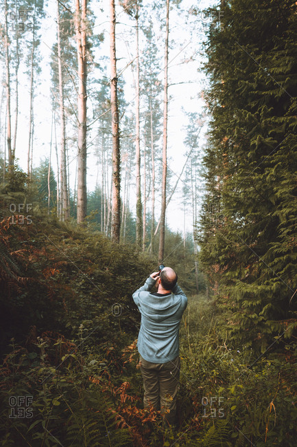 Back view of adult photographer man standing in green calm forest and taking shot in Pais Vasco, Basque country, Spain