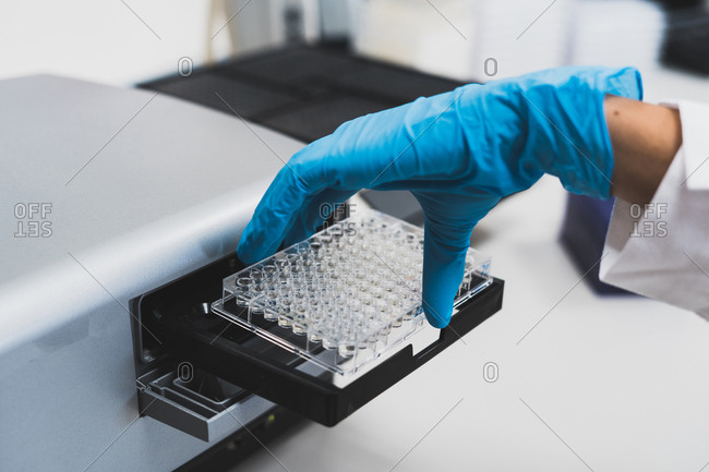 Crop view of hand of researcher in blue rubber gloves using medical equipment for doing test in laboratory