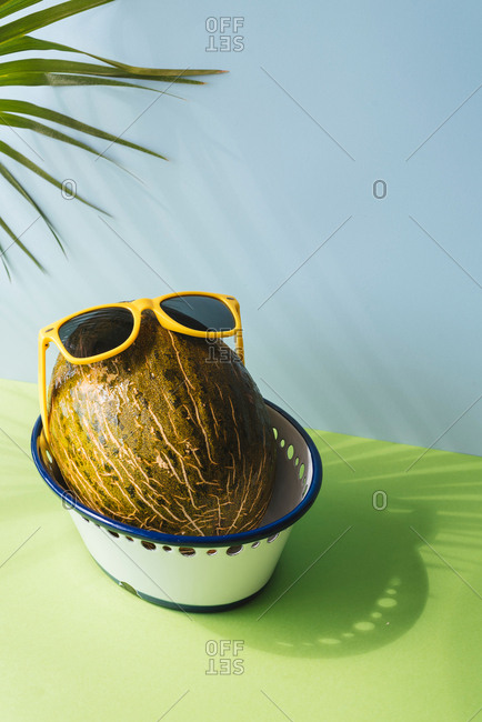 Toad skin melons variety with fun sunglasses, in blue and green background shadows of palm leaves are reflected