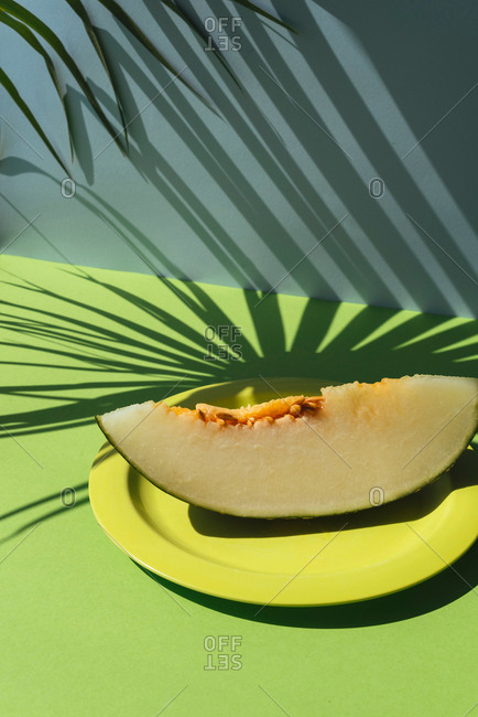 Half Melon toad skin cut into slice. Colorful summer theme. in blue and green background, shadows of palm leaves