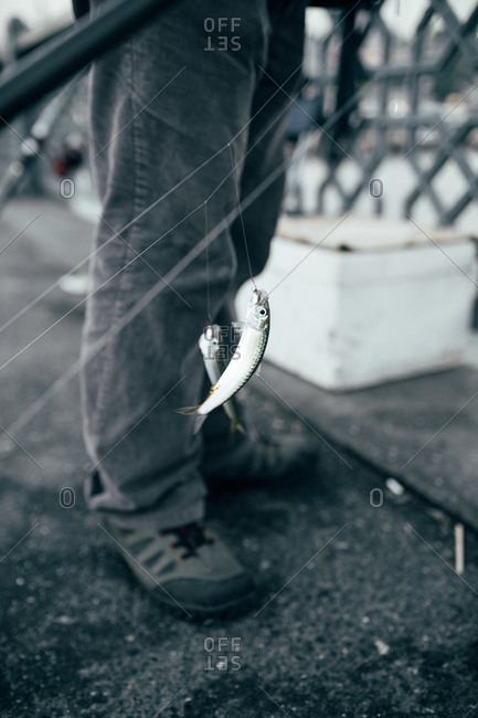 Tiny fish hanging on thin line near crop legs of man on street of Istanbul