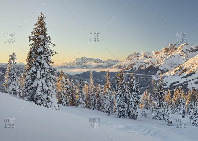 View of the Kollmannsegg in the direction of Steinernes Meer, Leoganger Steinberge (mountains), Pinzgau, Salzburg, Austria