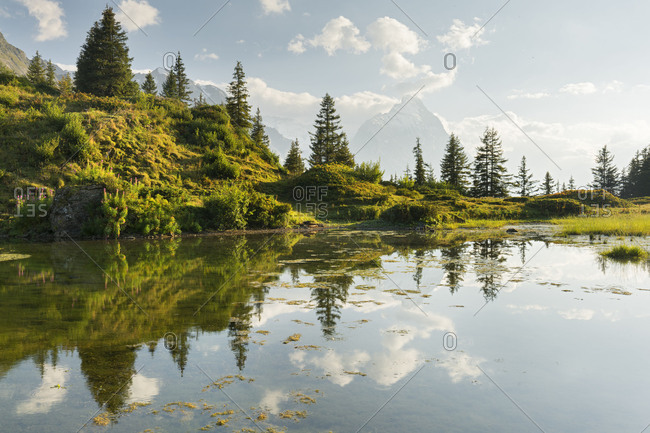 Antseeuwen, north face of the Eiger, Gross Scheidegg, Grindelwald, the Bernese Oberland, Switzerland