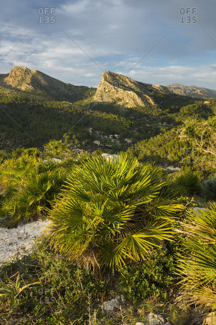 Mountains at Sant Elm, Majorca, the Balearic Islands, Spain