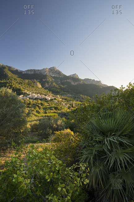 Estellencs, Majorca, the Balearic Islands, Spain