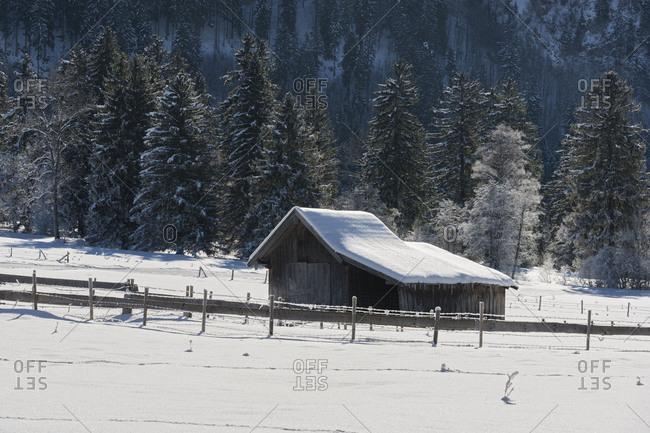 snowy wooden hut, Schwangau, Allgau, Bavaria, Germany