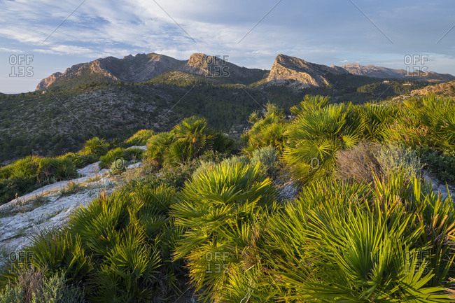 Mountains at Sant Elm, Majorca, the Balearic Islands, Spain
