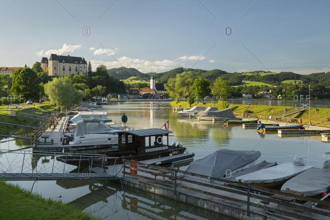 May 24, 2017: Grizzle on the Danube, Upper Austria, Austria