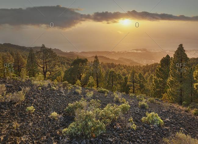 Sundown Las Manchas, Parque Natural Cumbre Vieja, island La Palma, Canary islands, Spain