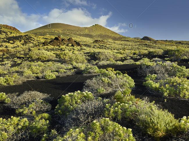 Volcano scenery at the Pico de Tablas, island La Palma, Canary islands, Spain