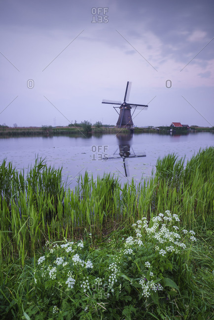Green grass frames the windmill reflected in the canal at dusk Kinderdijk Rotterdam South Holland Netherlands Europe