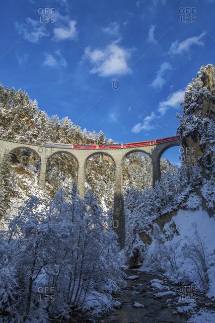 Bernina Express passes through the snowy woods around Filisur Canton of Grisons Switzerland Europe