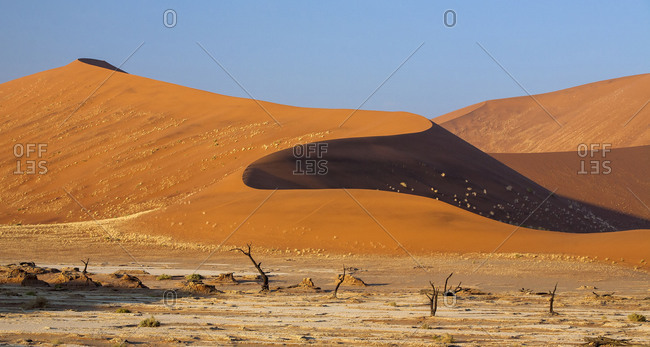 Parched ground and Dead Acacia surrounded by sandy dunes Deadvlei Sossusvlei Namib Desert Naukluft National Park Namibia Africa