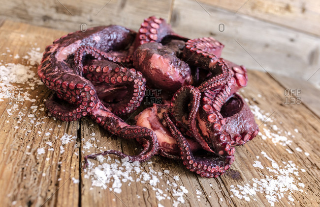 Fresh octopus on chopping board a typical ingredient of the healthy Italian cuisine
