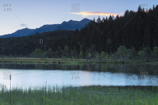Dawn lights up the swamp of the Natural Reserve of Pian di Gembro Aprica province of Sondrio Valtellina Lombardy Italy Europe