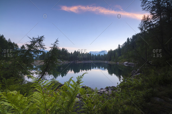 Tree branches frame the blue Lago Azzurro at sunrise Motta Madesimo Spluga Valley Sondrio Valtellina Lombardy Italy Europe