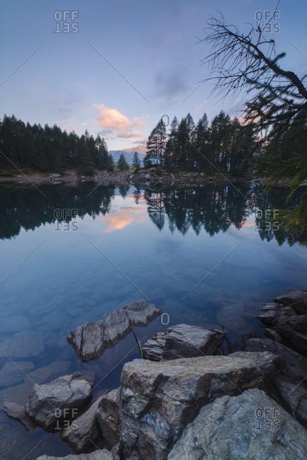 Trees are reflected in Lago Azzurro under pink sky at dawn Motta Madesimo Spluga Valley Sondrio Valtellina Lombardy Italy Europe