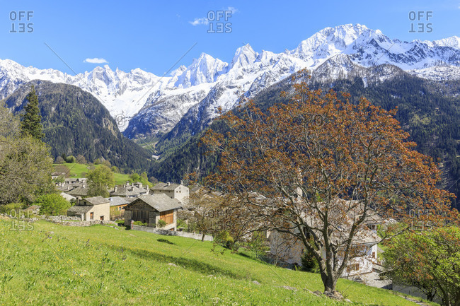View of Soglio between meadows and snowy peaks in spring Maloja canton of Graubunden Engadin Bregaglia Valley Switzerland Europe