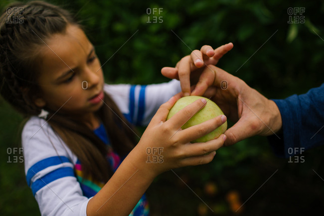 Girl examining a freshly picked apple