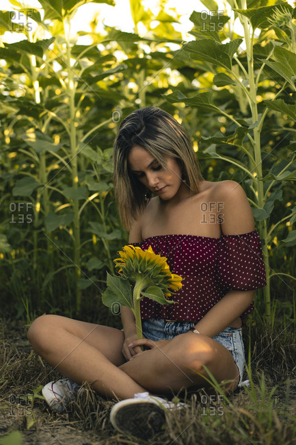 Young woman sitting in a field of sunflowers with a sunflower in her hand