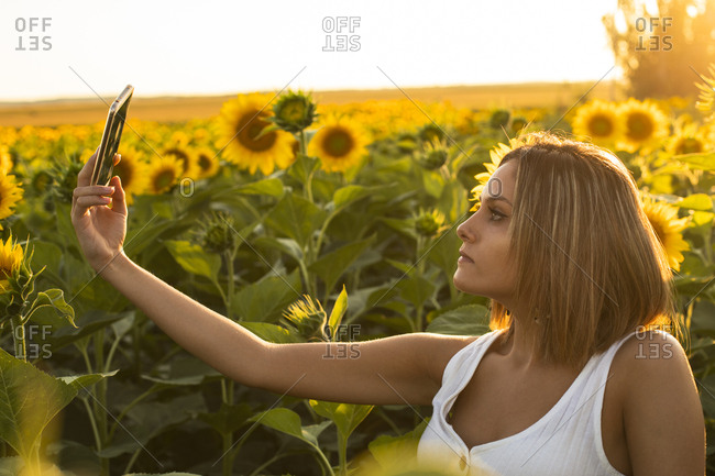 Young woman in a field of sunflowers taking a selfie