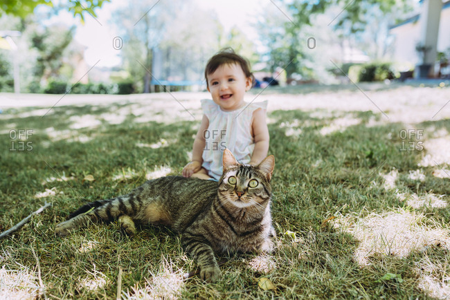 Portrait of tabby cat on a meadow with laughing baby girl sitting in the background