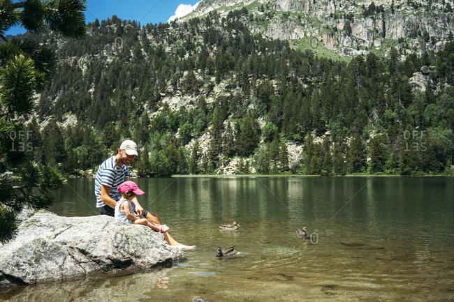 Spain- Father and daughter sitting on a rock at a mountain lake- feeding ducks