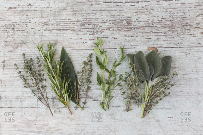 Row of fresh Provencal herbs on wood