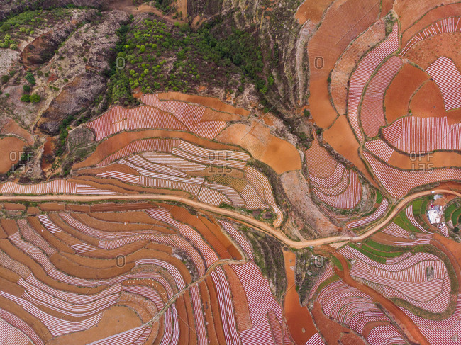 China- Yunnan province- Dongchuan- Red Land