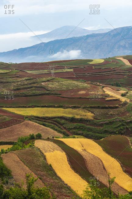 China- Yunnan province- Dongchuan- Red Land