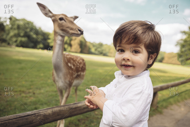 Portrait of happy toddler in a wild park with roe deer in the background