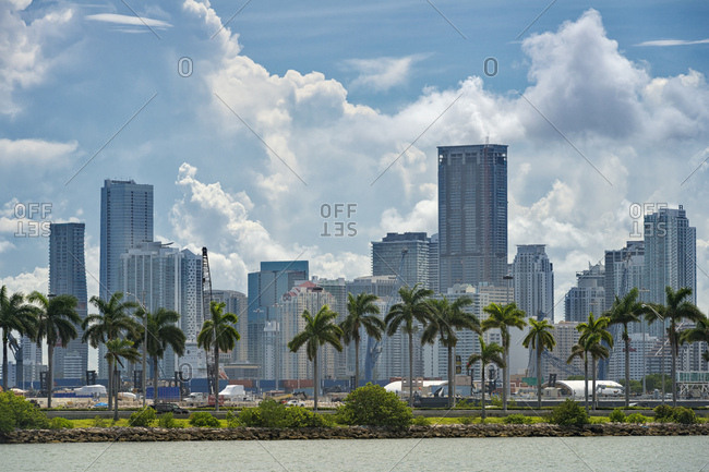 August 22, 2017: USA- Florida- Miami- Downtown- skyline with high-rises and palm trees