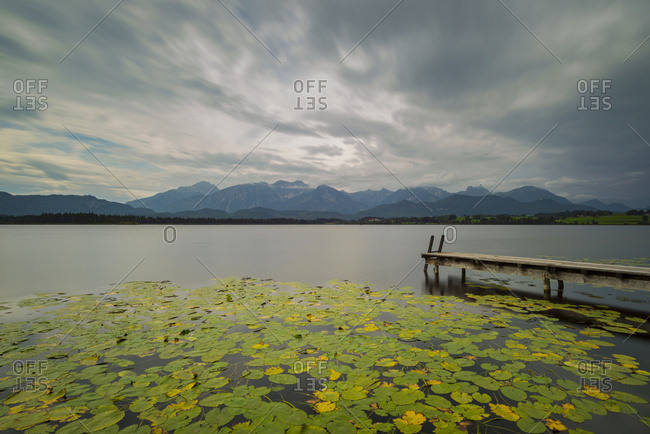 Germany- Bavaria- Allgaeu- Hopfen am See- Hopfensee with jetty and lily pads