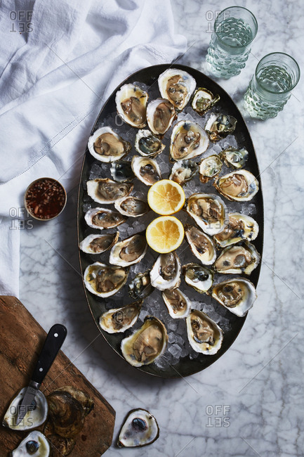 Large oyster dish