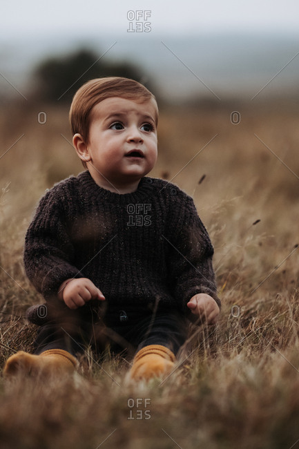 Portrait of a toddler boy wearing brown sweater sitting in a field of dry grass