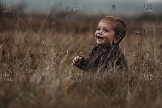 Laughing toddler boy sitting in a field of tall grass