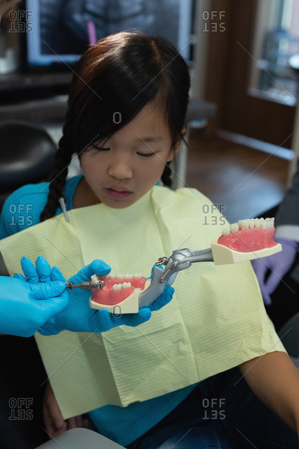 Female dentist explaining about teeth model in clinic