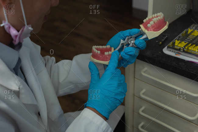 Mid section of male dentist holding artificial teeth in clinic