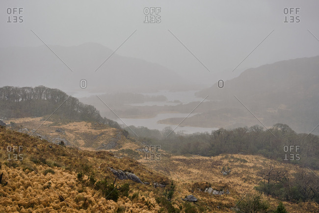 Killarney national park on a foggy rainy day, Co. Kerry, Ireland, Europe, 2018