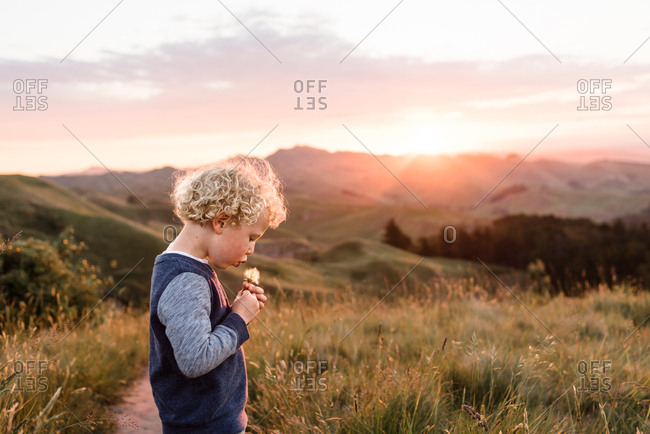 Boy blowing dandelion flower in the countryside
