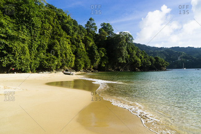 Desert beach, Pirate's bay, Charlotteville, Tobago, Trinidad and Tobago, West Indies, South America